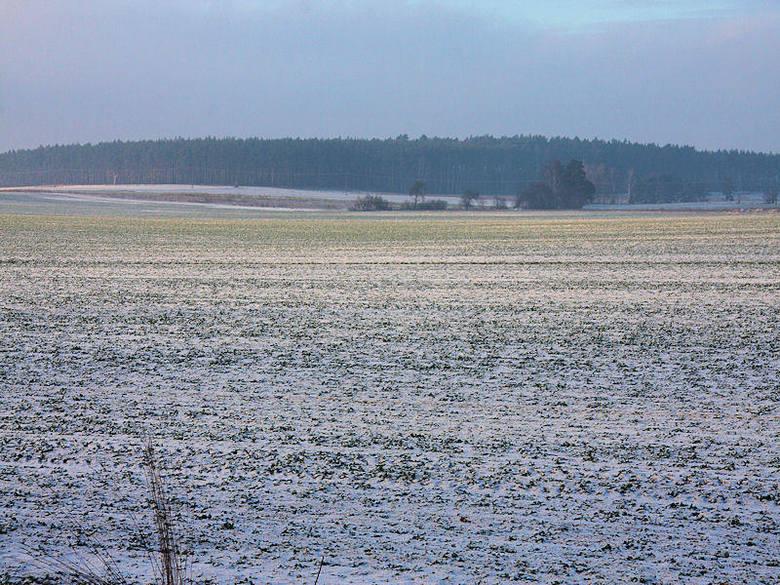 W piątek śnieg w niemal całej Polsce. A jaki będzie weekend? [WIDEO]