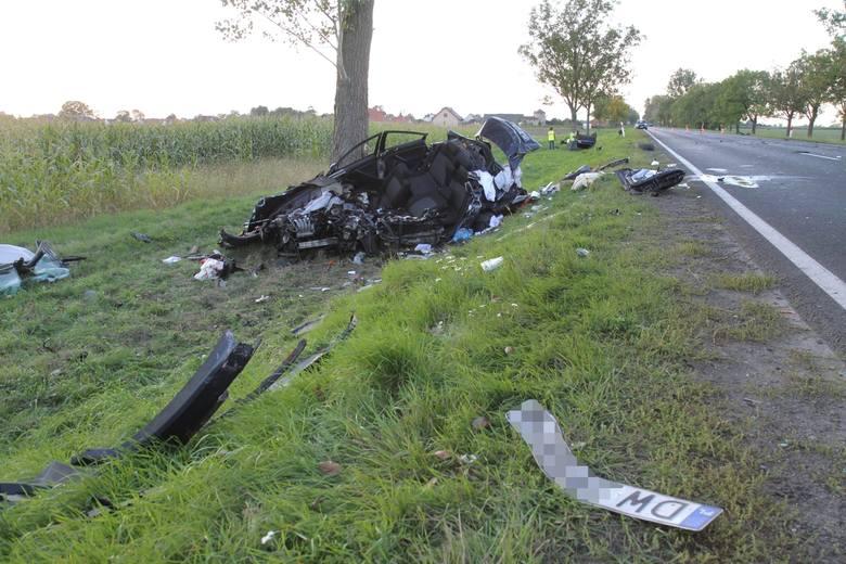 Śmiertelny wypadek koło Pabianic. Wypadek na DK 71 w Gospodarzu koło Łodzi. Informacje policji ws. śmierci kierowcy 13.09.2019