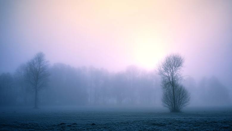 Tradycji stanie się zadość. Tegoroczne Boże Narodzenie podobnie jak poprzednie, będzie ciepłe, pochmurne i deszczowe. Według prognozy dr. Marka Błasia