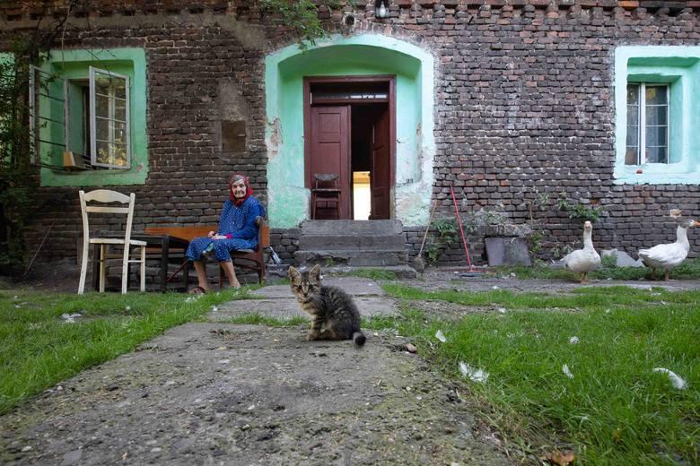Dobrze Zaprojektowane: domy bezdomne. Piękno ceglanych domów WIDEO