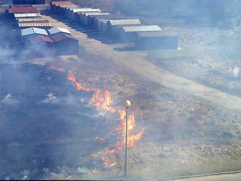 Pożar traw przy ul. Skrajnej. Strażacy się spisali na medal (zdjęcia)