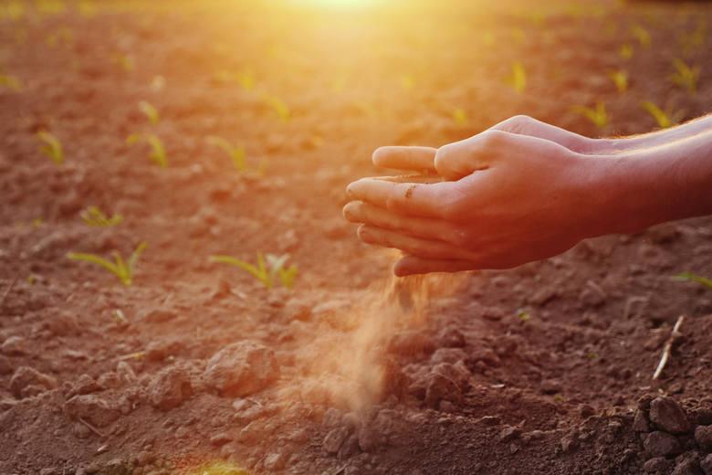 Prognozy nie są optymistyczne: mimo deszczu grozi nam rekordowa susza. Czy jest jeszcze szansa, by jej zapobiec?