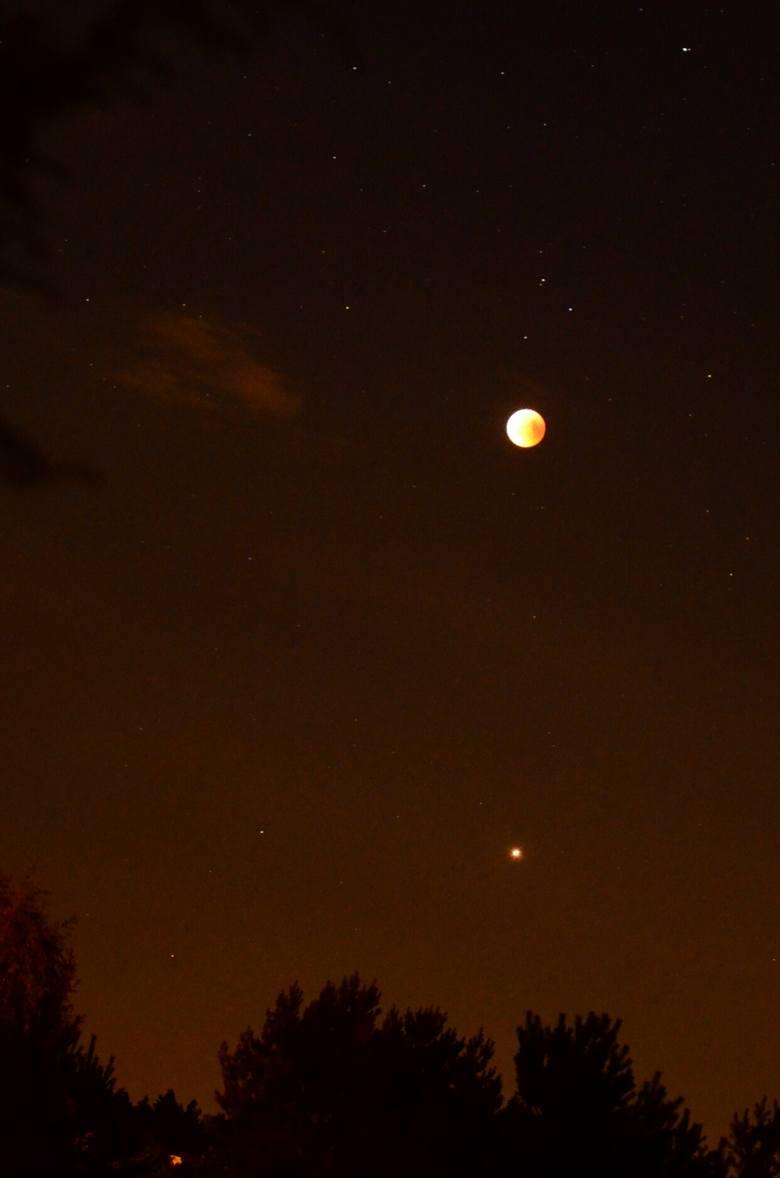 W piątek, 27 lipca, mogliśmy podziwiać zaćmienie Księżyca - najdłuższe w tym stuleciu. Dodatkowo bardzo blisko Księżyca na niebie pojawił się Mars. Czerwona