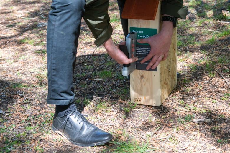 150 domków dla owadów zostaje zawieszonych na drzewach i obiektach infrastruktury w poznańskich parkach i lasach. To pomysł urzędu miasta.