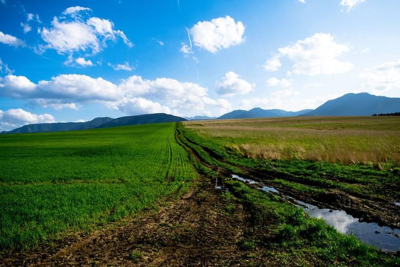 Do 100 tys. zł na chronienie gospodarstwa przed suszą, czyli nabór na modernizację