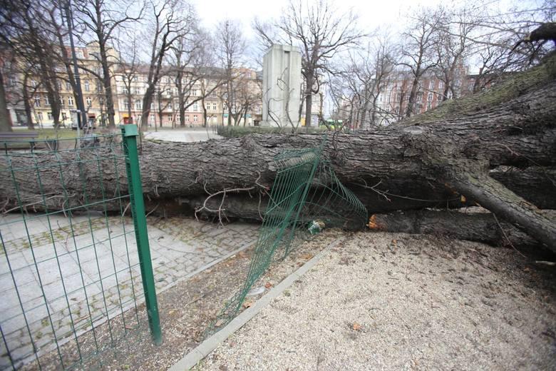 Skutki wichury w Katowicach