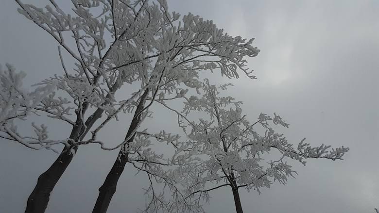 Trudne warunki na beskidzkich szlakach. Dużo śniegu, wiatr i słaba widoczność.Zobacz kolejne zdjęcia. Przesuwaj zdjęcia w prawo - naciśnij strzałkę lub