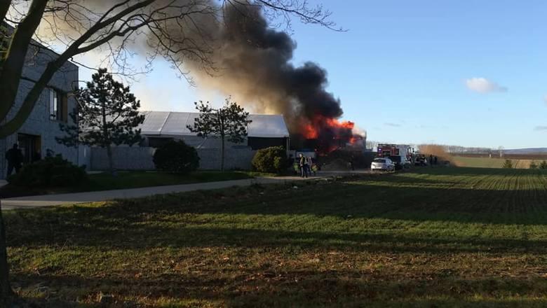 Pożar MiniEurolandu w Kłodzku. Mnóstwo dymu w całej okolicy