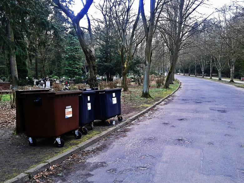 Więcej pojemników na śmieci na cmentarzach w Szczecinie. W walce z dzikimi wysypiskami