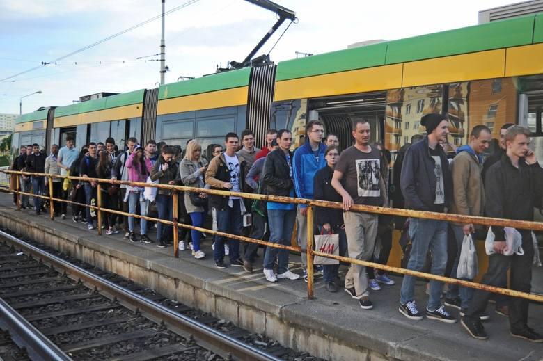 Wielkie Grillowanie 2014: Bili, wyrywali drzwi z tramwajów. MPK Poznań podlicza straty