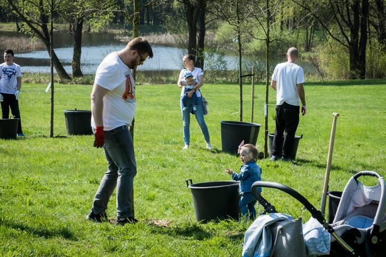 Bydgoszczanie, którzy chcieli na pamiątkę narodzin swych dzieci zasadzić drzewa, spotkali się w Myślęcinku w ramach akcji Drzewa młodej Bydgoszczy -