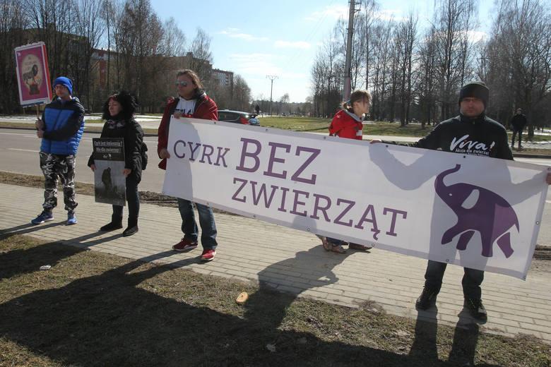 """Około 20 aktywistów z Fundacji Viva i grupy """"Nie Dla Cyrku Ze Zwierzętami w Rzeszowie"""" pikietowało w sobotę i niedzielę pod cyrkami Safari i Kiev Circus."""