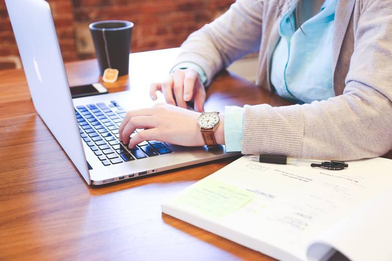 Można się też zatrudnić jako... hejter. Do obowiązków będzie należało pisanie obraźliwych tekstów na portalach społecznościowych. Kandydat na to stanowisko