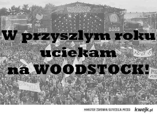 Woodstock 2013: Przystanek w oczach internautów