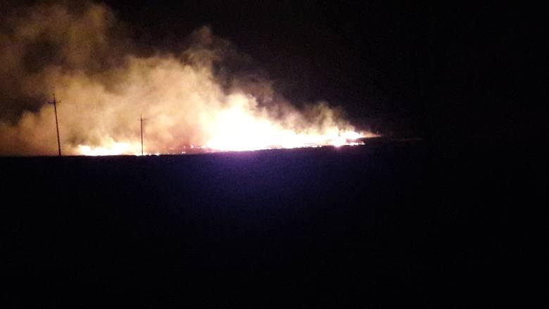 Pożar w Żarnowcu