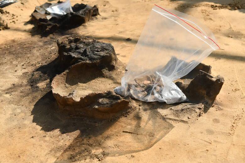 Archeolodzy z Muzeum Twierdzy Kostrzyn przyznają, że jeszcze nigdy nie mieli tak dużo pracy. Wydzierają ziemi prawdziwe skarby!