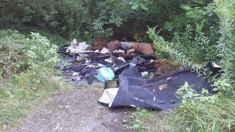 W 2018 roku strażnicy ujawnili i doprowadzili do usunięcia 762 dzikich wysypisk śmieci. W 44 przypadkach sprzątali je sprawcy na własny koszt, a w 7