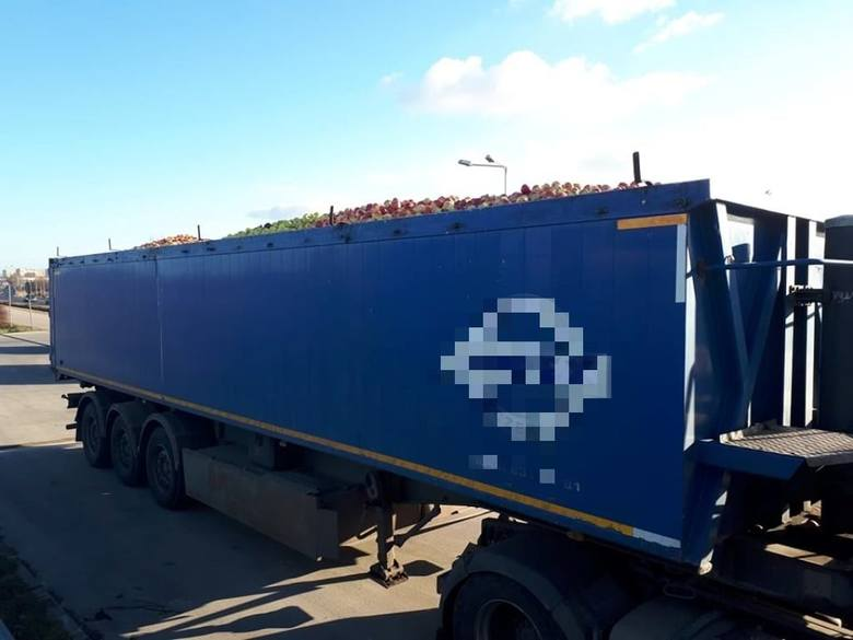Przepełniona ciężarówka z jabłkami na drodze pod Białobrzegami. Po kontroli ITD kierowca dalej nie pojechał