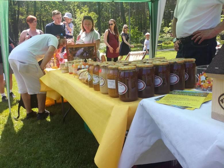 W niedzielę, 2 czerwca, w zielonogórskim ogrodzie botanicznym odbyła się akcja Miodobrania. Każdy mógł dowiedzieć się więcej na temat pracy pszczół,