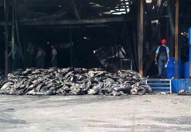 W pożarze spaliło się 2 tys. ton mięsa i wędlin!