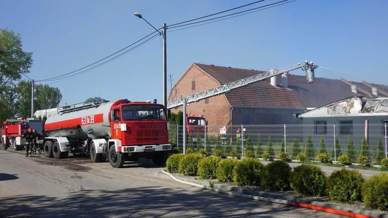 Pożar chlewni w Wychowańcu. Zginęło kilka tysięcy świń. Na miejscu strażacy z 4 powiatów Czytaj więcej