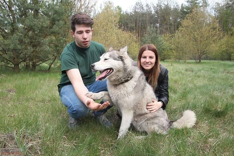 Nowa jakość w schronisku dla zwierząt we Włocławku