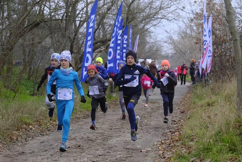 Po raz siódmy i ostatni spotkali się w tym roku biegacze w ramach Grand Prix Torunia w Biegach Przełajowych. Jak zwykle trasa liczyła 6 kilometrów i