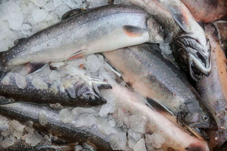 Na talerzach Polaków najczęściej goszczą: śledzie, makrele, czarniaki, łososie i pstrągi.