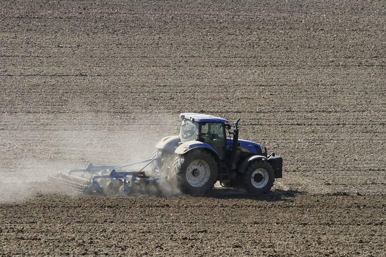 ANR będzie dzierżawić ziemię na 10 lat. Sprawdź nowe zasady