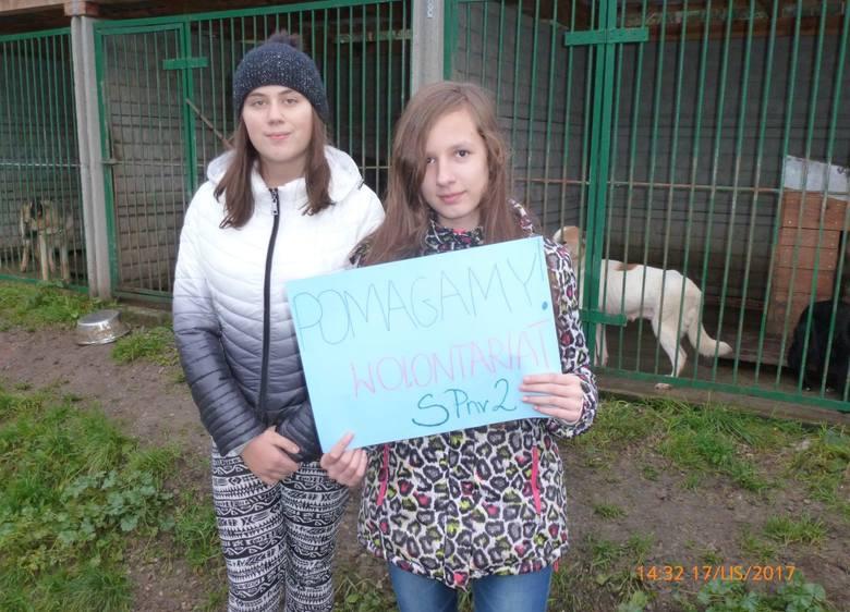 II Finał Wielkiej Orkiestry Kudłatej Pomocy w Suchedniowie