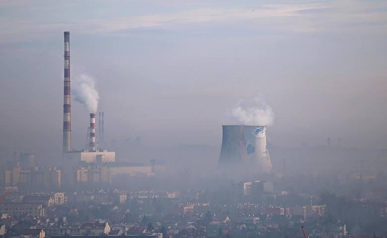 """Jednym ze zgłoszonych przez mieszkańców projektów jest: """"Zielony pochłaniacz smogu dla każdej dzielnicy!"""". Projekt zakłada powstanie w każdej z 18-stu"""