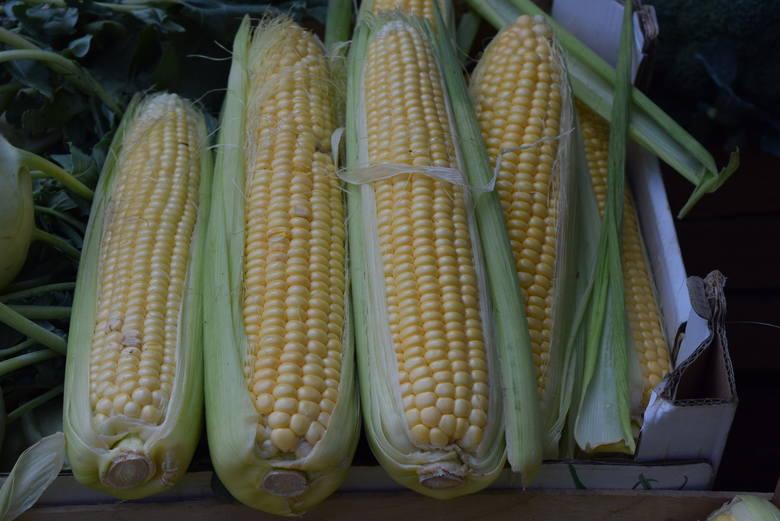 Kukurydza – 2,50 zł/kolba