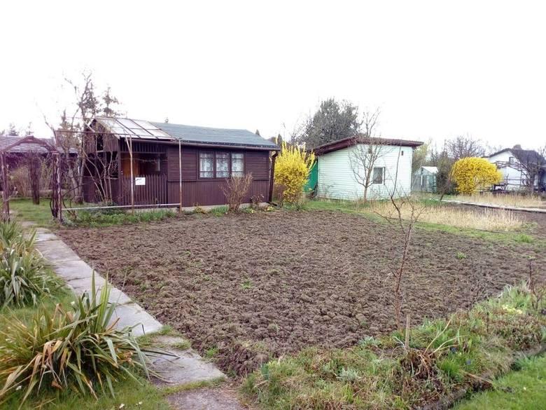 """Działka ROD Malwa - Świdnik""""Działka ma powierzchnię 300 m2 jest położona w środku ogrodu w jasnym nasłonecznionym miejscu.Na działce znajduje"""