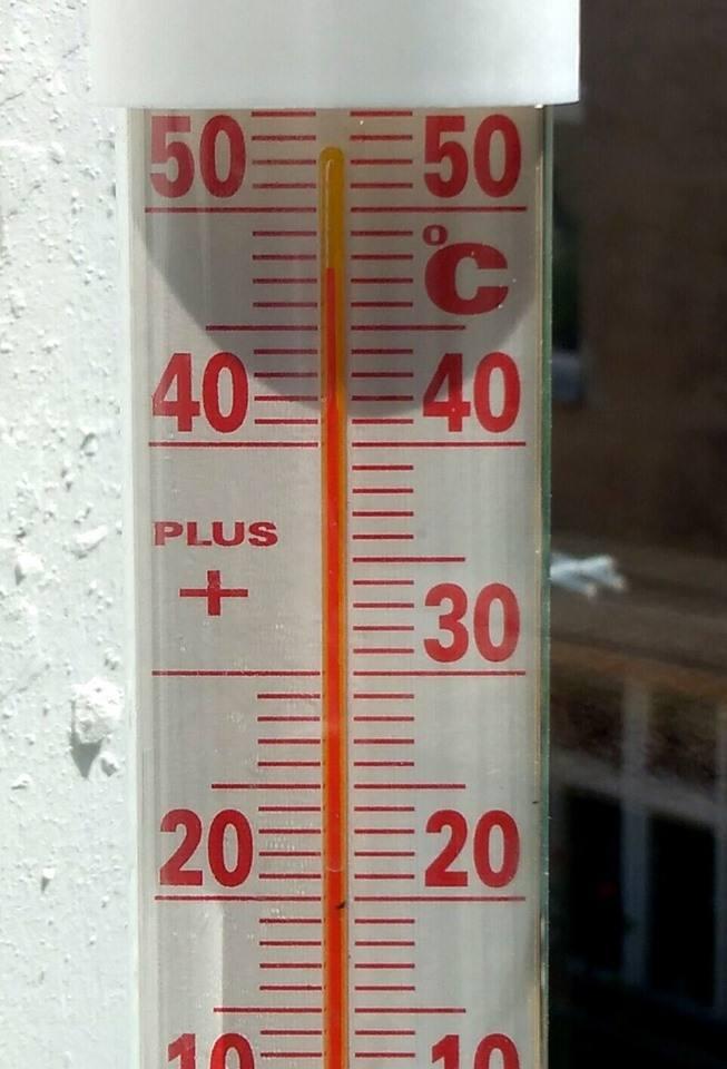 Termometry pokazują rekordowo wysoką temperaturę.