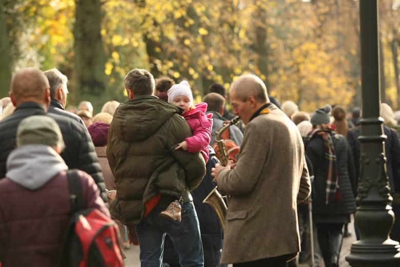 Oto najbardziej uczęszczane ulice i deptaki miasta - zestawienie przygotowane na podstawie Kompleksowego Badania Ruchu Wrocławia.Zobacz poszczególne