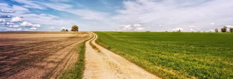 Nominuj Rolnika Roku i wybierz Mistrzów Agro. Zachęcamy do oddawania głosów!