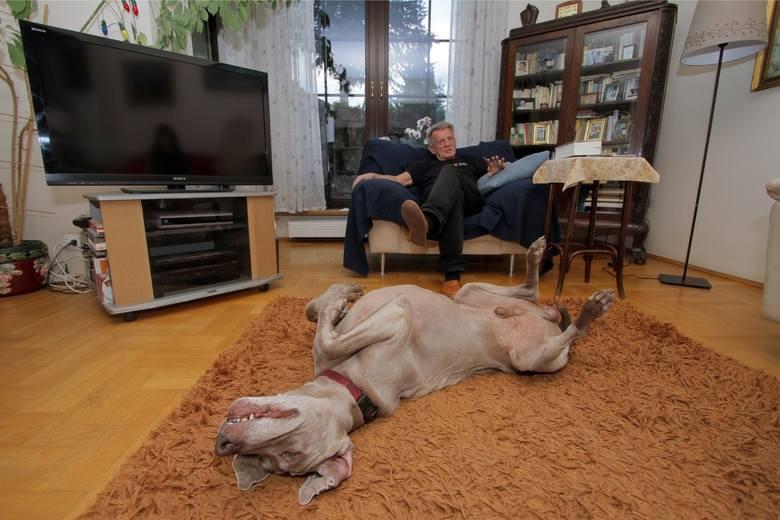 Bronisław Cieślak ostatnie dni życia spędzał w domu pod Krakowem. Tak wyglądał jego azyl [ZDJĘCIA] 9.05.2021