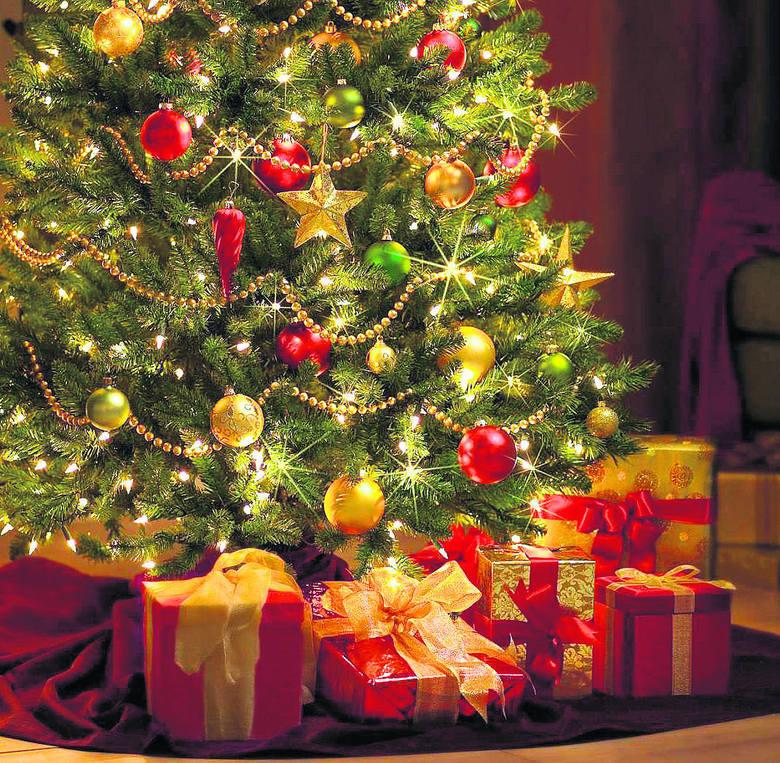 Choinka nawiązuje w swej symbolice do drzewa pierwszych rodziców, a jako świąteczne drzewko jest stosunkowo młoda - zaczęła być tak postrzegana ledwie