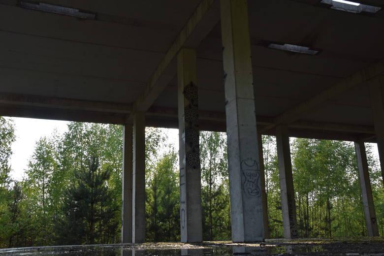 Tyle zostało po budowiez Jurajskiego Parku Wodnego. Te ruiny to jedyny ślad wielkich planówZobacz kolejne zdjęcia. Przesuwaj zdjęcia w prawo - naciśnij