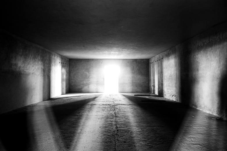 """II miejsce w konkursie fotograficznym """"Majdanek w obiektywie"""""""