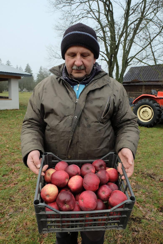 Z koni i jabłek da się nieźle żyć. Tylko trzeba dać im serce