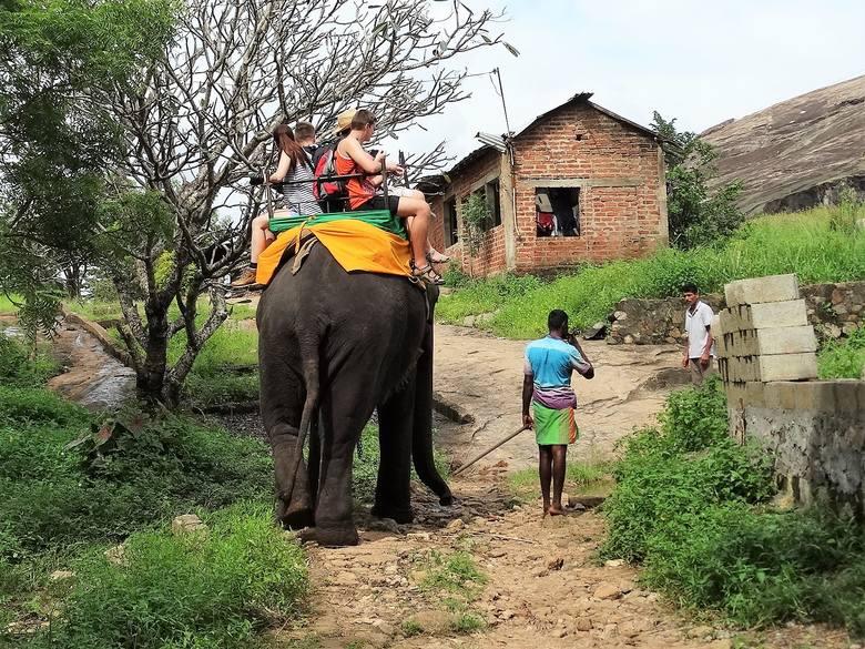 Przejażdżka turysty na słoniu zwykle wiąże się z całą serią opłat i napiwków