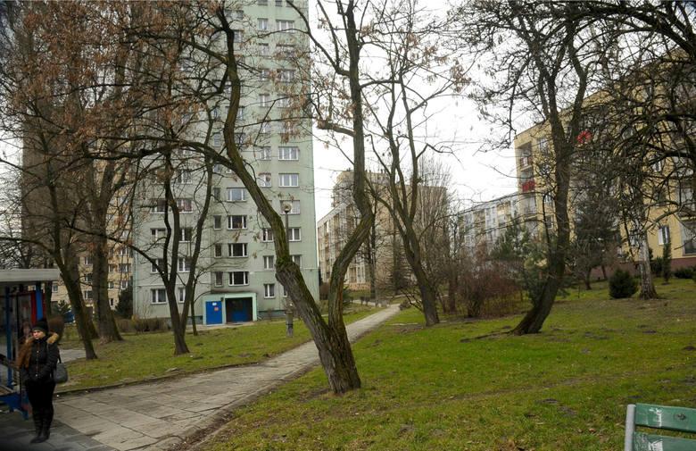 Hałaśliwym grupom pijących alkohol nie odpuszczają mieszkańcy Wzgórz Krzesławickich. Tam 49 razy zgłoszono problem z nielegalnym piciem alkoholu.