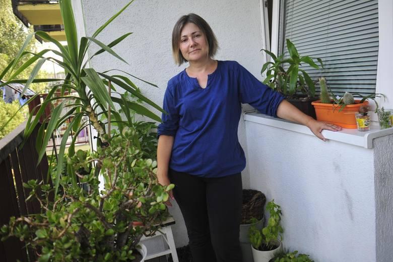 Krakowska Matka Boska Zielna i jej schronisko dla roślin