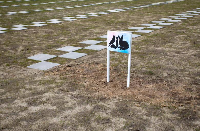 """Nazwę wybrano podczas konkursu na nazwę dla """"cmentarza dla zwierząt domowych"""", który powstał na terenie PGK w pobliżu Bierkowa. """"Cmentarz dla zwierząt domowych"""" będzie pierwszym tego typu obiektem w regionie słupskim. W """"Dolinie Pupilków"""" każdy będzie mógł pochować swoje domowe zwierzę, z którym..."""