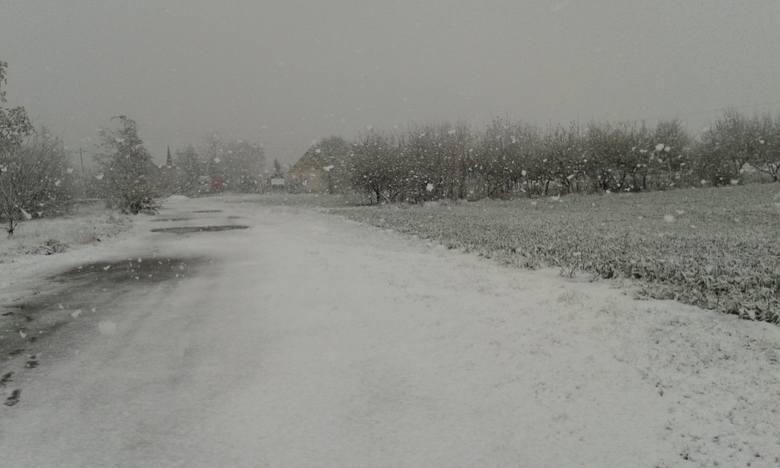 """""""Piękna zima tej wiosny"""". W Suchaniu spadł śnieg [zdjęcia]"""