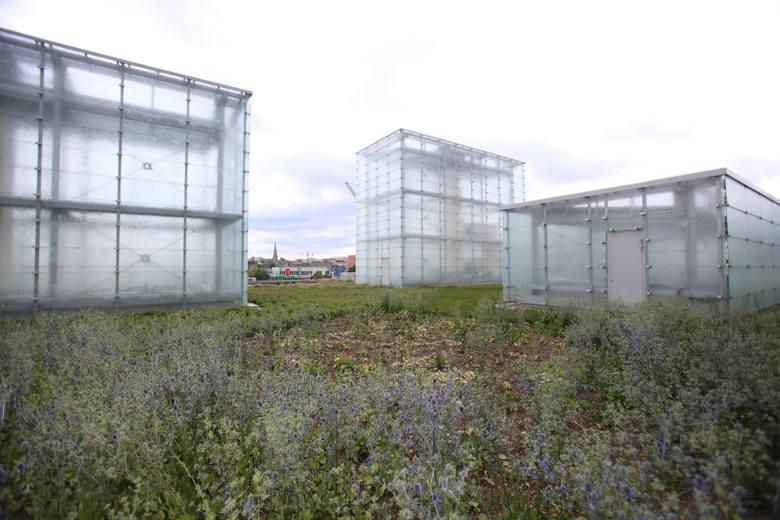 A teraz o architekturze nowej siedziby Muzeum Śląskiego [WIDEO]