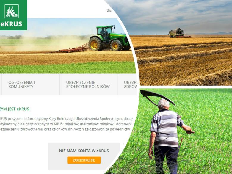 Rolniku, czego dowiesz się o sobie online? Sprawdź na eKRUS