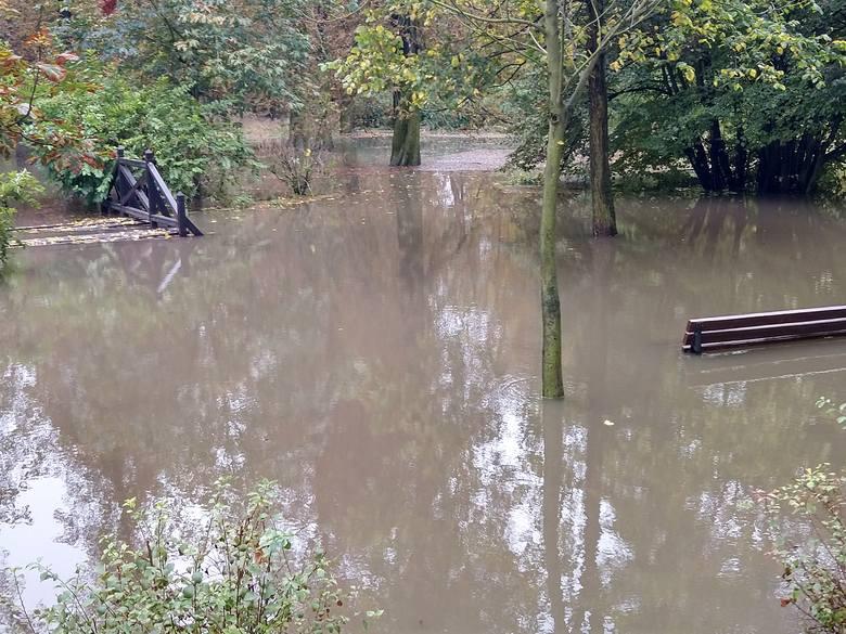 Woda, która nie zmieściła się w stawku, zalała park na Brochowie