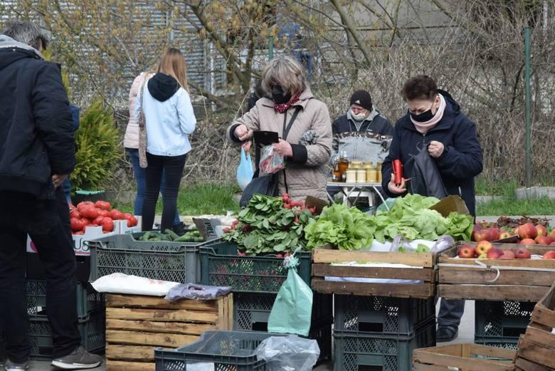 W środę, 21 kwietnia na targu w Opatowie był wielki wybór owoców i warzyw. Pojawiła się młoda kapusta. Utrzymuje się niska cena jabłek, większość odmian